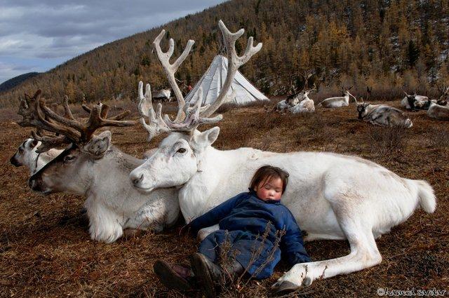 Монголия.jpeg