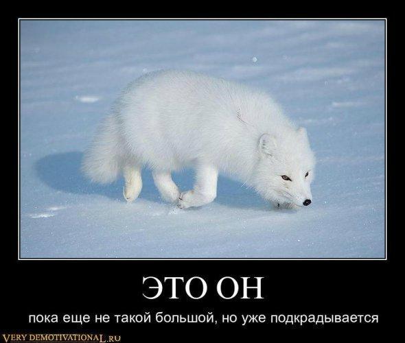 c68ddb849956.jpg