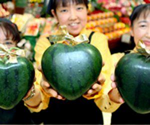japan_heartshaped_watermelon.jpg