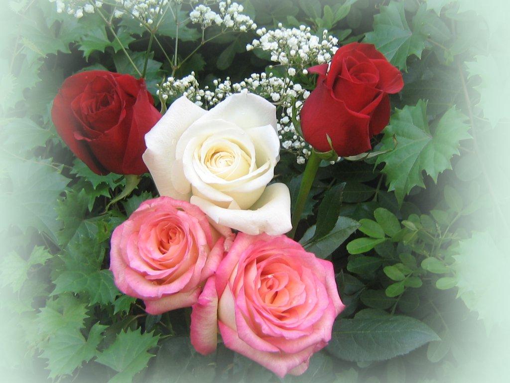 roses_bouquet.jpg